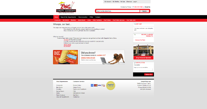 New Project Completed: Shop at Zing