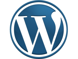WordPress 3.0, Beta 1! Step up and get your copies while they're hot!